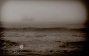 Dering Photography - Nature / Fine Art